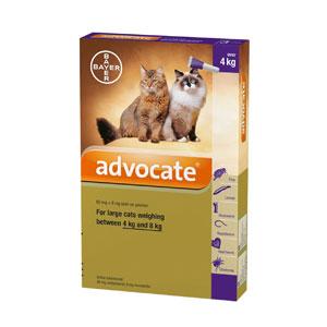 ยากำจัดเห็บหมัดAdvocate Spot on for cats