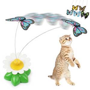 ของเล่นแมว-แมวจับผีเสื้อน้อย